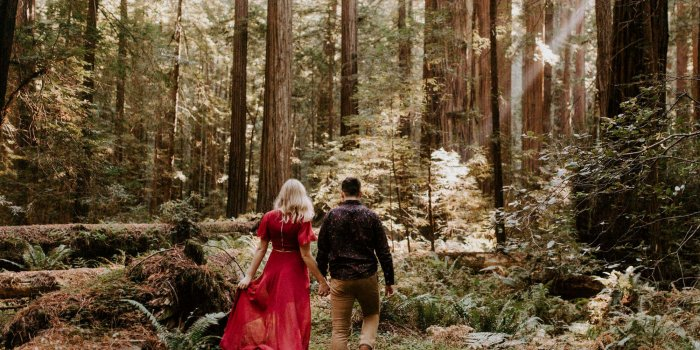 Ali + Dexter // Avenue of the Giants Engagement Session
